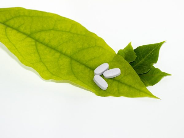 Leaves with three white pills on the end.